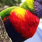 Beaky by MiloAddict
