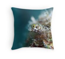 Bonaire Blenny Throw Pillow