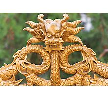 The Forbidden City - Series C - Murals and Carvings 4 Photographic Print
