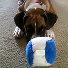 Jackson's new toy by Linda Bennett