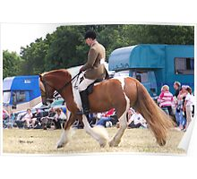 Chestnut Vanner with Rider Poster