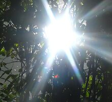"""summer""©series-sun-light by Heli_ Aarniranta©"