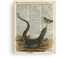 Lizard catching a moth,Vintage Illustration of Reptile. Canvas Print