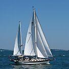 Sailing in Boston harbor by Nancy Richard