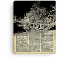 White And Bloack Lonley Tree Dictionary Art Canvas Print