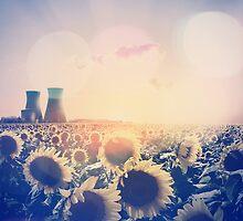 Field of Dreams by Matteo Pontonutti