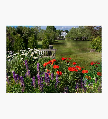Flower - Poppy - Piece of heaven Photographic Print