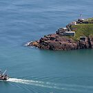 Fort Amherst, Nfld by Benjamin Brauer