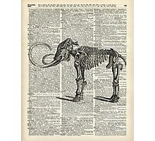 Mammoth Elephant Bones.Skeleton over a Antique Dictionary Book page Photographic Print