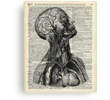 Medical Human Anatomy Illustration Over Old Book Page Canvas Print