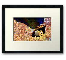Abstract in Rust VI Framed Print