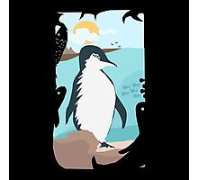 Penguin Vacation Photographic Print