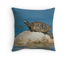 Northern Map Turtle Throw Pillow