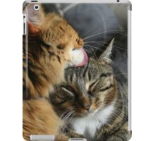 Allogrooming iPad Case/Skin