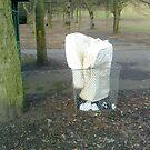 mattress dumped in a bin in the park by H J Field