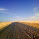 Salt Road between Swakopmund and Hentiesbaai, Namibia, Africa by Irene  van Vuuren