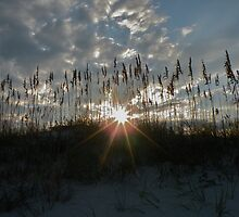 Over the Dunes at Wrigthsville, Beach, NC by EddaM