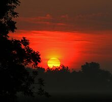 A Sunrise Painted by God by Susan Blevins
