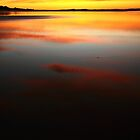 water light. bunurong marine park by tim buckley | bodhiimages