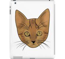 Cat / Kitten (Benji) iPad Case/Skin