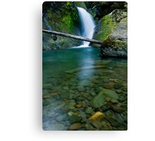 House Rock Falls Canvas Print