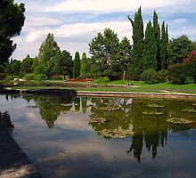 The Water Gardens # 3 - Sigurtà - Italy by sstarlightss