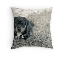 Sweet as pie Throw Pillow