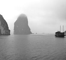 Fog over Halong Bay...Viet Nam.. by Marcelo Pla