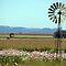 Windpompe in AFRIKA! / Windmills in AFRICA!