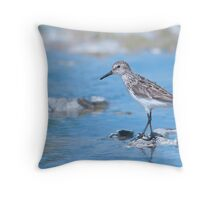 Semipalmated Sandpiper Throw Pillow