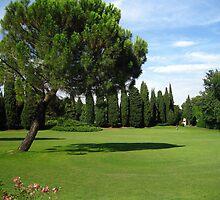 Trees & Trees - Sigurtà - Italy by sstarlightss