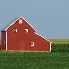 Iowa Barns by lorilee