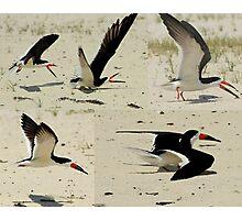 Beach Fun Photographic Print