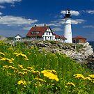 Portland Head Light and Summer Flowers by Mark Van Scyoc