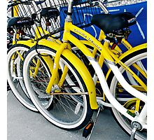 Yellow Bicycles Photographic Print