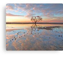 The Dawn Tree - Victoria Point Canvas Print