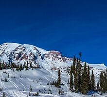 Mt Rainier Panorama by Kelushan