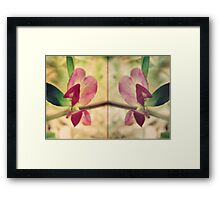 fleur de deux Framed Print