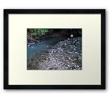 Orb, by the stream Framed Print