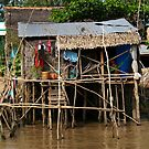 Stilt House - Mekong Delta by Jordan Miscamble
