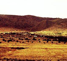 The Village by Omar Dakhane