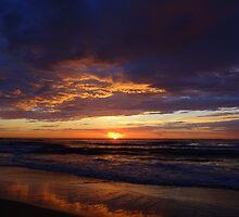 Beauty by Of Land & Ocean - Samantha Goode