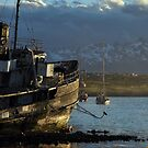 Golden Boat of Ushuaia by Alessandro Pinto