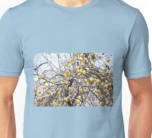 apples sag on tree in snow Unisex T-Shirt