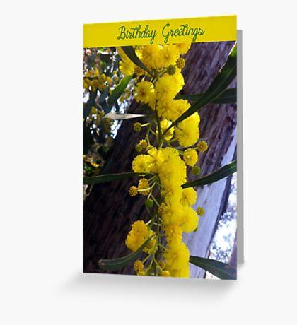 Wattle (Acacia) Greeting Card
