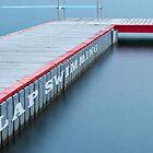 Lap Swimming by John Robb