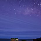 Loch Ard Gorge by Andrew McNeil