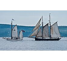 Tall ships 2011 Photographic Print