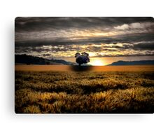 Another Day Of Glory ~ Sand Point, Oregon, USA Canvas Print
