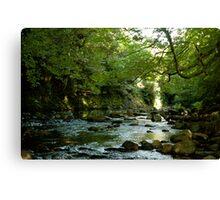 River in Devon Canvas Print